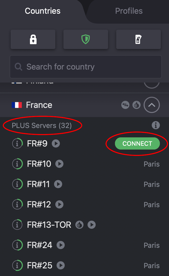Connect to french plus servers